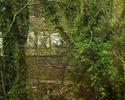 tmb000022_Coalbrookdale_Viadu