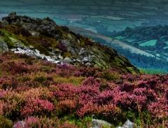 cordon-hill-view-very-very-long_37