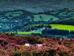 cordon-hill-view-very-very-long_38