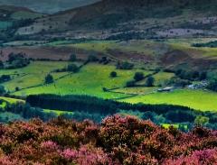 cordon-hill-view-very-very-long_40