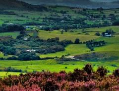 cordon-hill-view-very-very-long_42
