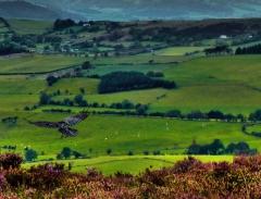cordon-hill-view-very-very-long_43