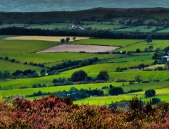 cordon-hill-view-very-very-long_44