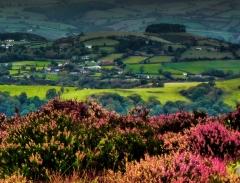 cordon-hill-view-very-very-long_48