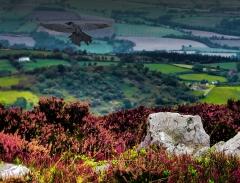 cordon-hill-view-very-very-long_49