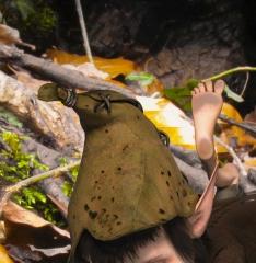 fairies_03