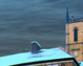 tmb000022_ironbridge_blue_w_s