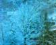 tmb000036_ironbridge_blue_w_s