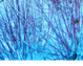 tmb000076_ironbridge_blue_w_s