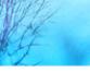 tmb000077_ironbridge_blue_w_s