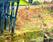 tmb000038_Ironbridge_painted_