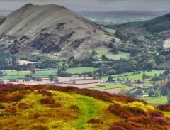 long-mynd-church-stretton-close-up-long-32-x-237_21