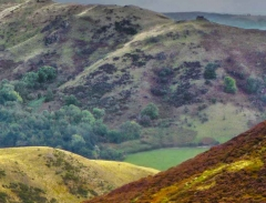 long-mynd-church-stretton-close-up-long-32-x-237_24