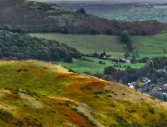 long-mynd-church-stretton-close-up-long-32-x-237_28