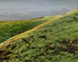 tmb000040_Long_Mynd_view_over