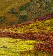 long-mynd-wrekin-to-caradoc_11