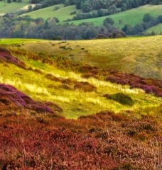 long-mynd-wrekin-to-caradoc_14