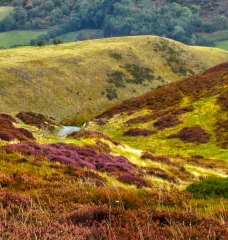 long-mynd-wrekin-to-caradoc_15