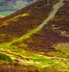 long-mynd-wrekin-to-caradoc_16