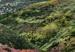 long-mynd-zoomed-out-desaturated_32