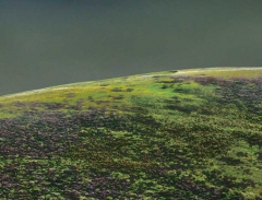 long-mynd-zoomed-out-greyer-very-very-long_16