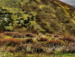 long-mynd-zoomed-out-greyer-very-very-long_18