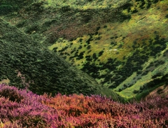 long-mynd-zoomed-out-greyer-very-very-long_45