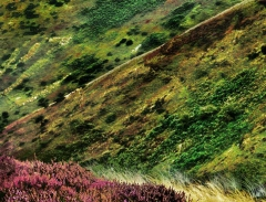 long-mynd-zoomed-out-greyer-very-very-long_46