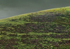 long-mynd-zoomed-out-greyer_23