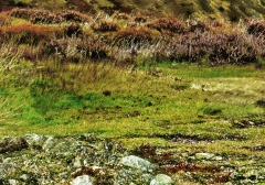long-mynd-zoomed-out-greyer_25