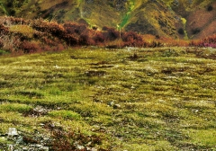 long-mynd-zoomed-out-greyer_26