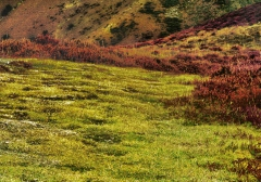 long-mynd-zoomed-out-greyer_27