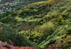 long-mynd-zoomed-out-greyer_32