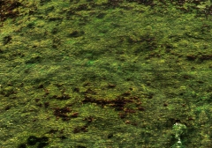 long-mynd-zoomed-out-greyer_34