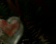 tmb000043_Love_bubble_fairies