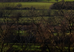 view-over-ludlow-from-titterstone-clee-darker-lovers_44