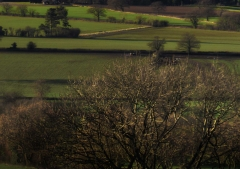 view-over-ludlow-from-titterstone-clee-darker-lovers_46
