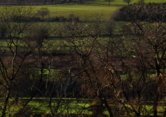 view-over-ludlow-from-titterstone-clee-darker_44