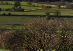 view-over-ludlow-from-titterstone-clee-darker_46