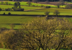 view-over-ludlow-from-titterstone-clee_46