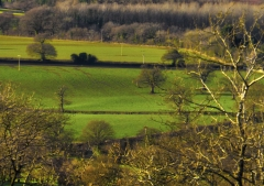 view-over-ludlow-from-titterstone-clee_47