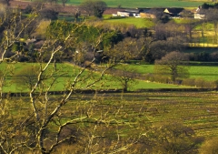 view-over-ludlow-from-titterstone-clee_48