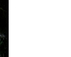 tmb000027_montgomery_sans_ban