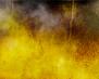tmb000001_Stokesay_red_kites