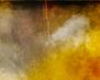 tmb000008_Stokesay_red_kites