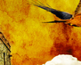 tmb000012_Stokesay_red_kites