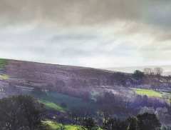 clee-hill-man-grayer-sky-in-diff-skies_29