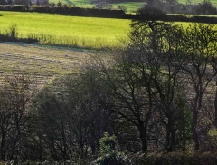 clee-hill-man-grayer-sky-in-diff-skies_47