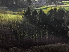 clee-hill-man-grayer-sky-in-diff-skies_49