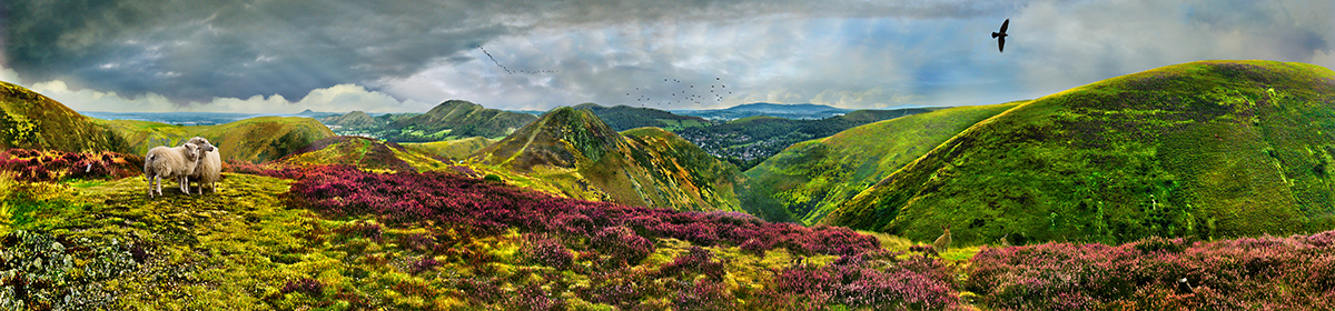 Long Mynd to Church Stretton - zoomed out - hares and sheep